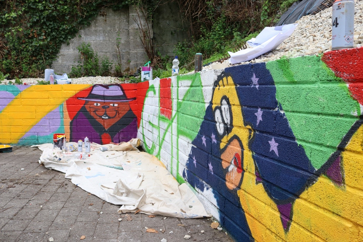 Graffiti image- Galway Simon Community-youth project